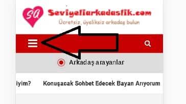 Zonguldak Dul Bayan ve Erkeklerle Tanışma